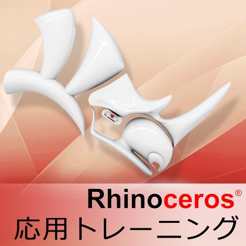 Rhinoceros 応用トレーニング